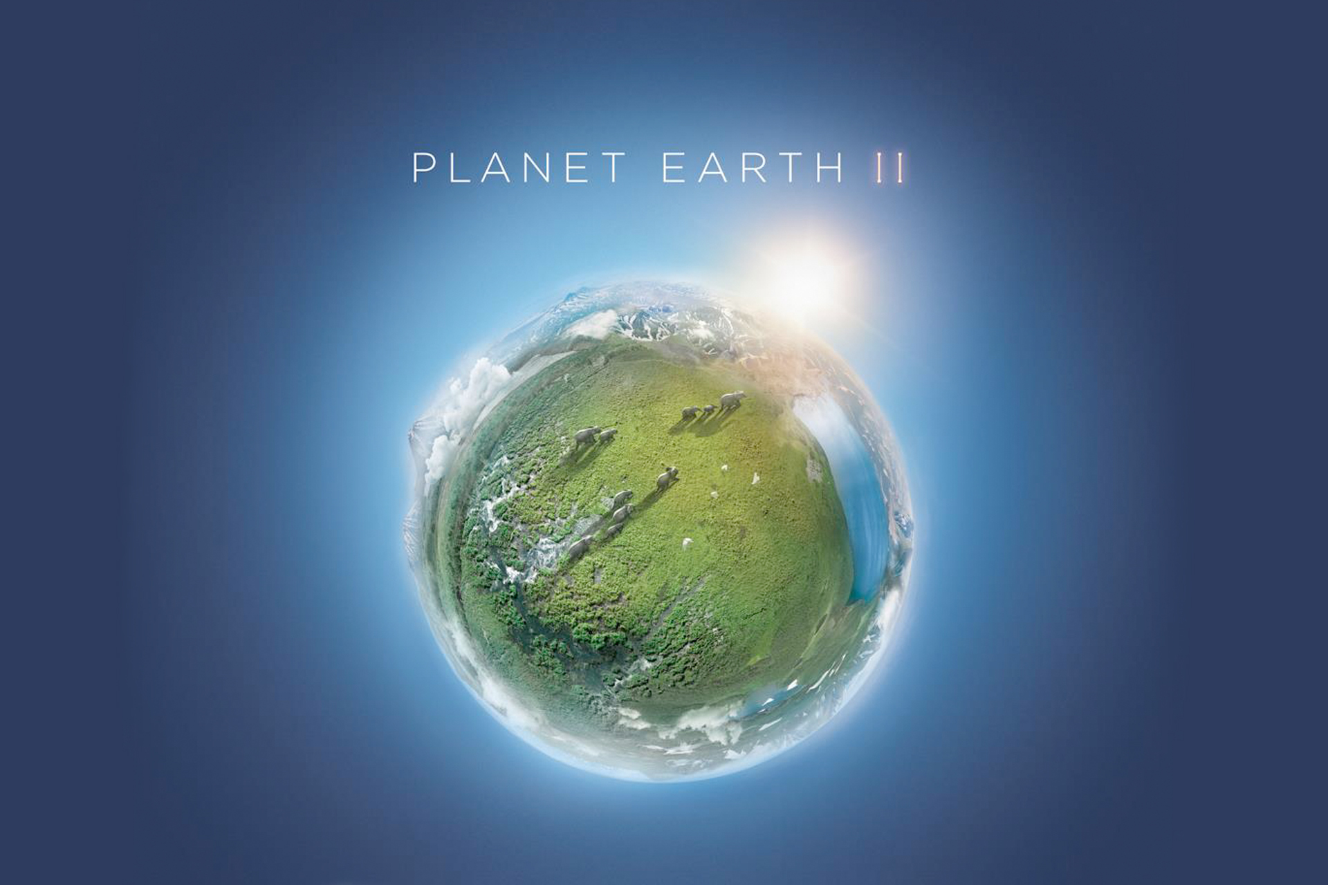 PLANET EARTH II - Live In Concert
